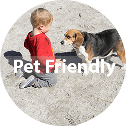 Pet-Friendly Lifestyle Choices