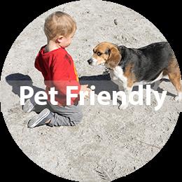 Pet-Friendly Lifestyle Choices