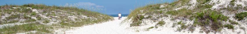 Pura Vida Clearwater Beach