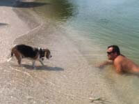 Dog Beach in Treasure Island Florida