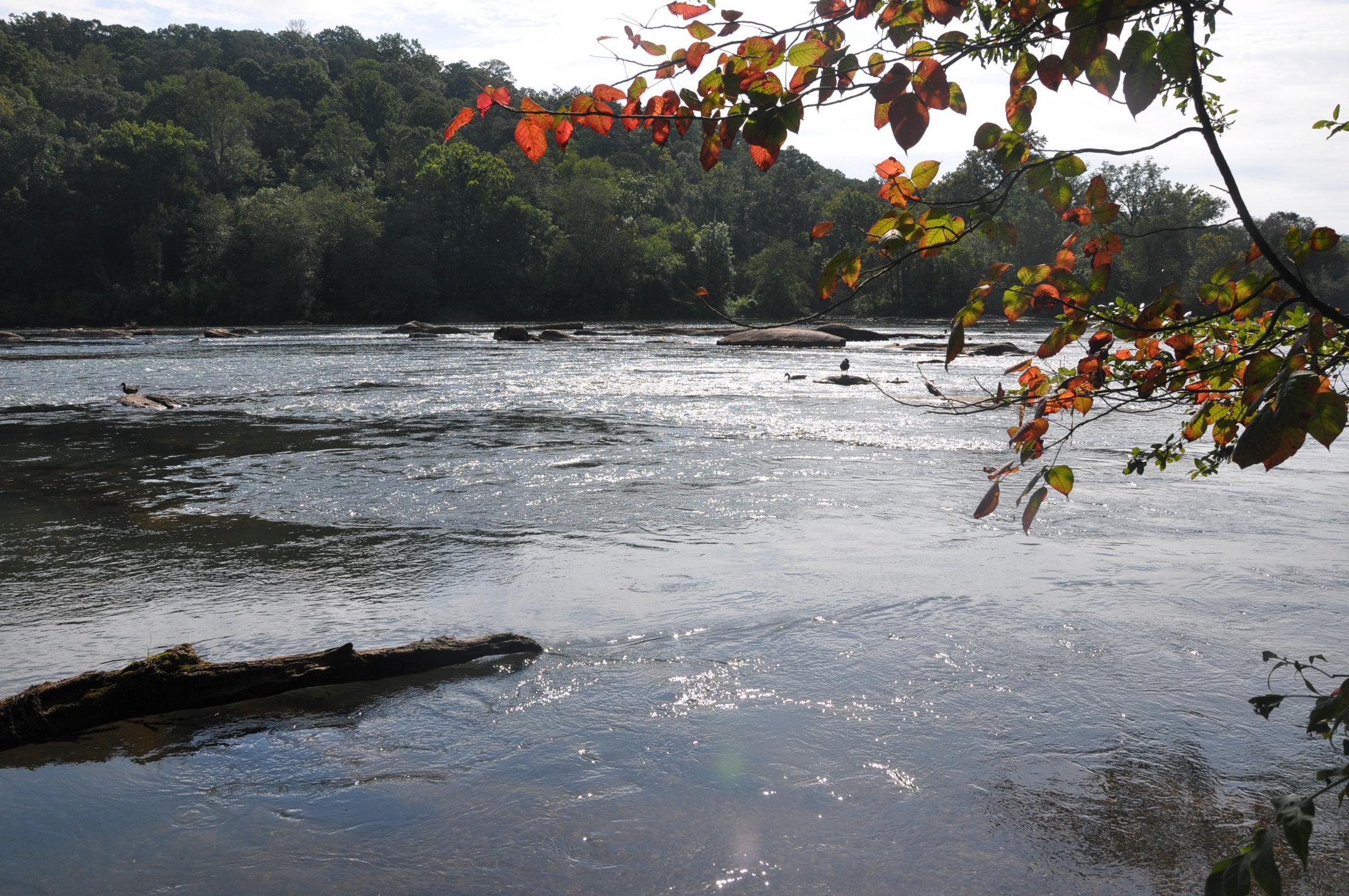 Chattahoochee River Near Roswell, GA