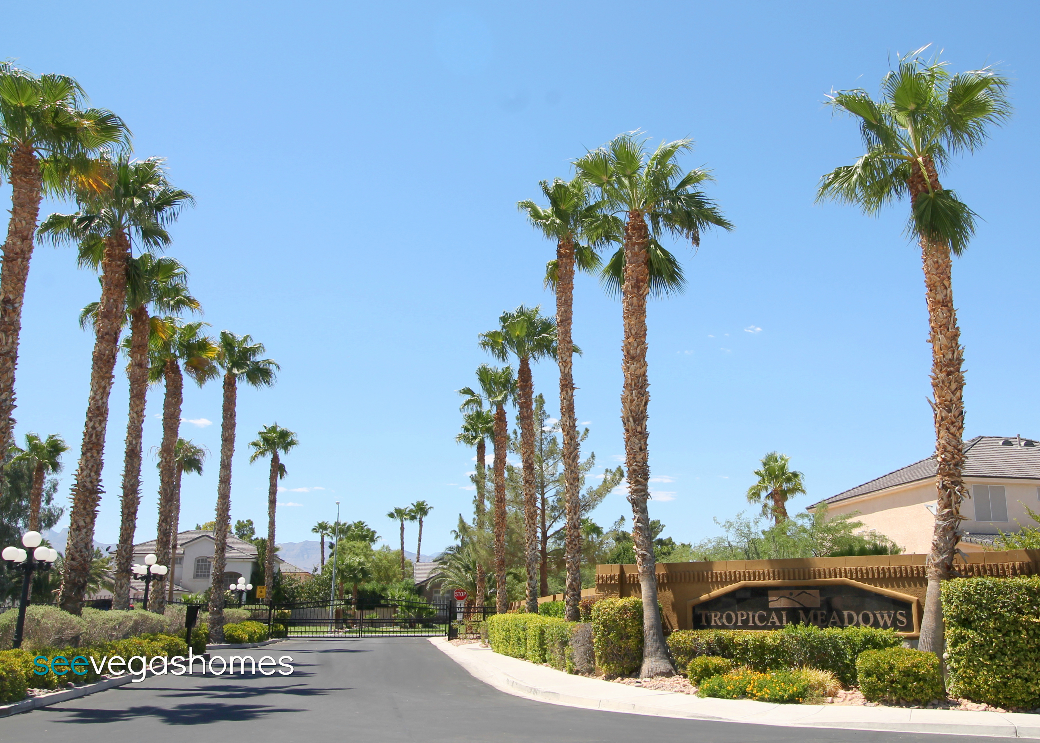 Tropical Meadows Las Vegas NV 89131 SeeVegasHomes