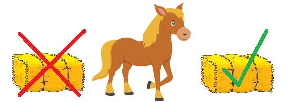 Horse Properties in  Kentucky