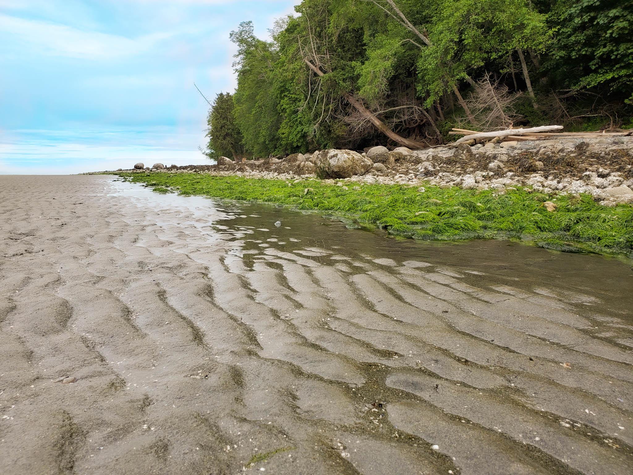 Invermere Beach Nanaimo - Cherie Baxter