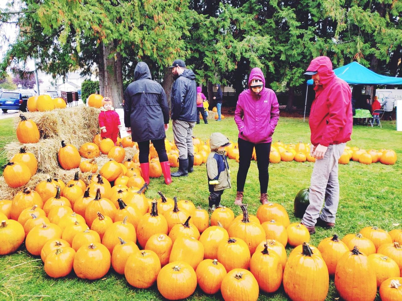 North Nanaimo Pumpkin Patch is an annual fundraiser put on by Dawn Walton & Associates