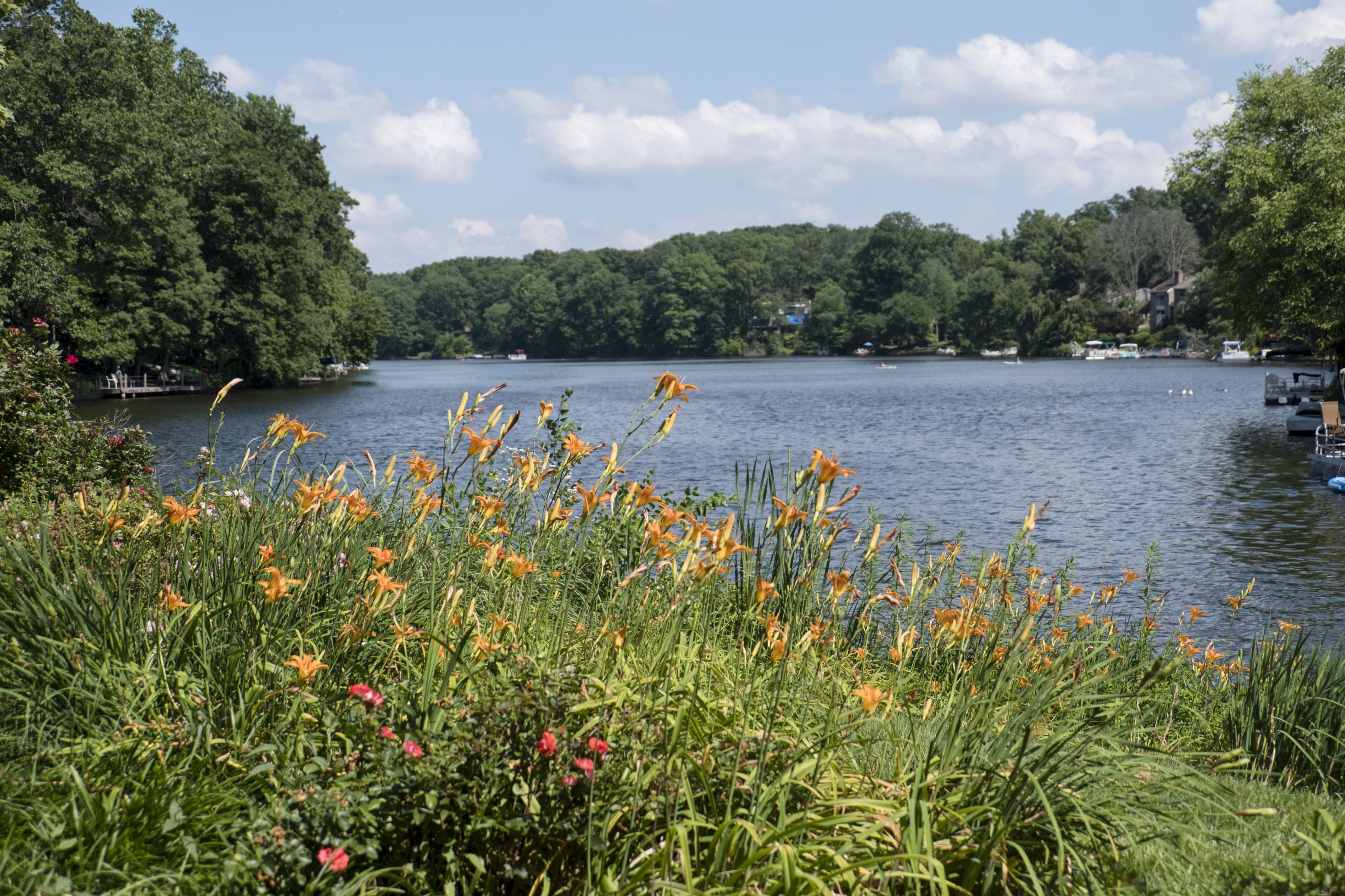 Lake Anne, Reston Virginia
