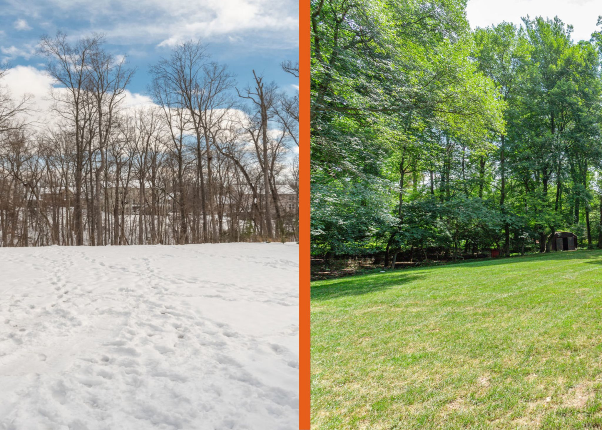 Yard Photo in Winter and Summer