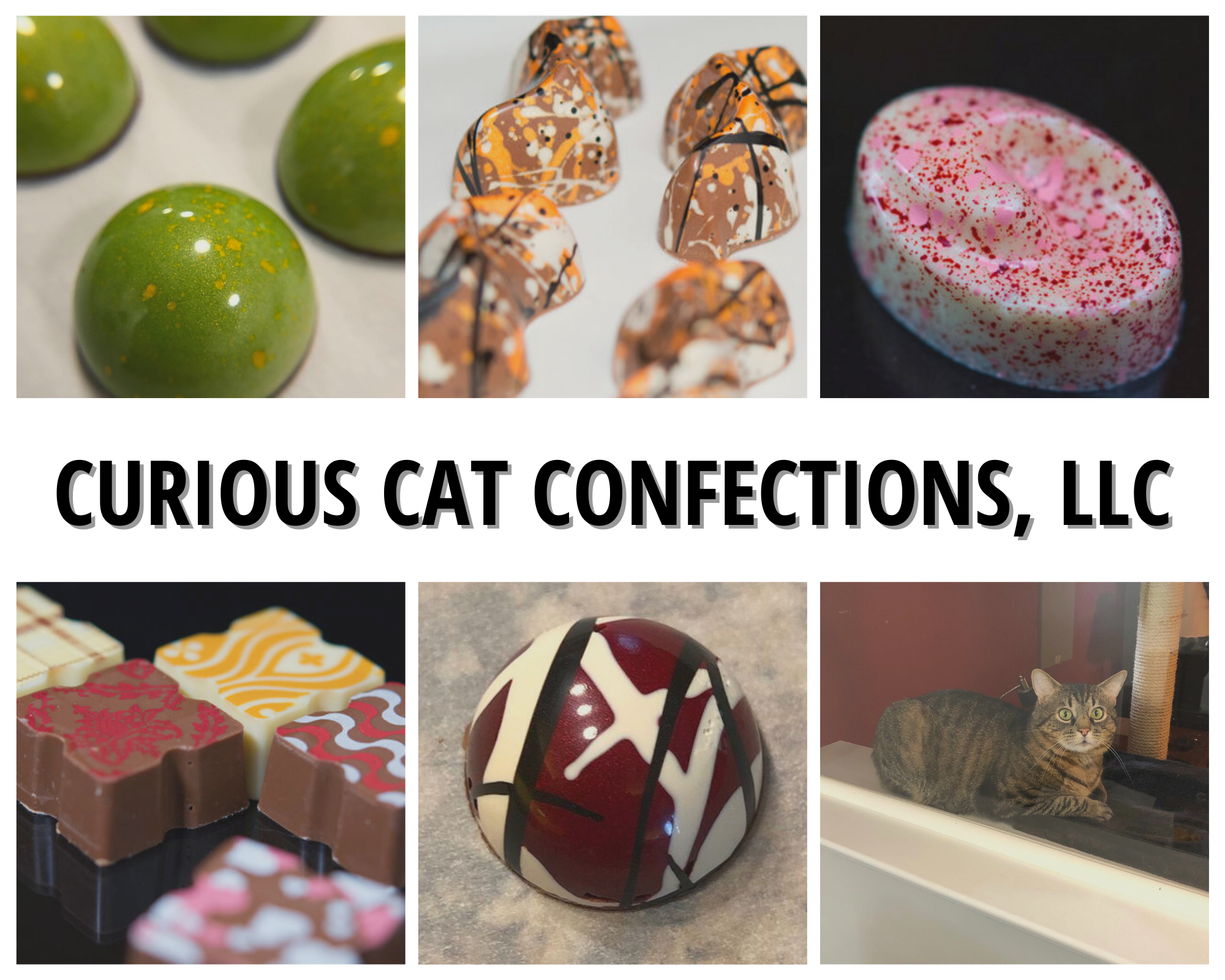 Vendor Spotlight: Joi and Morgan with Curious Cat Confections