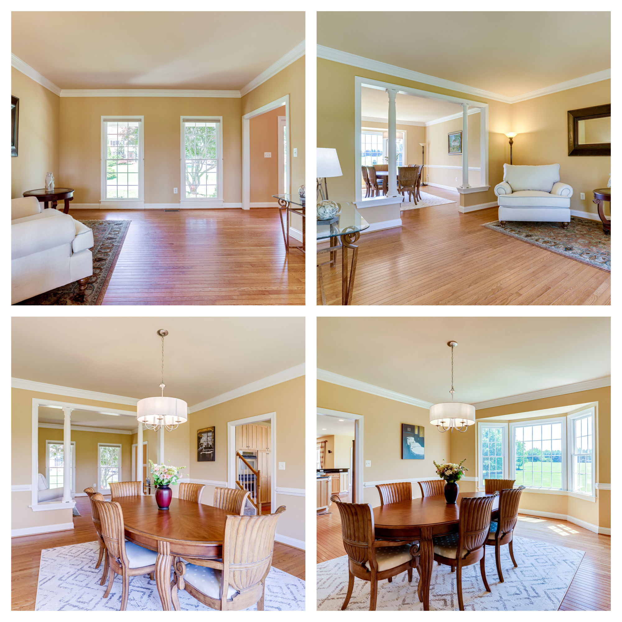 42259 Big Springs Ct, Leesburg- Living and Dining Room