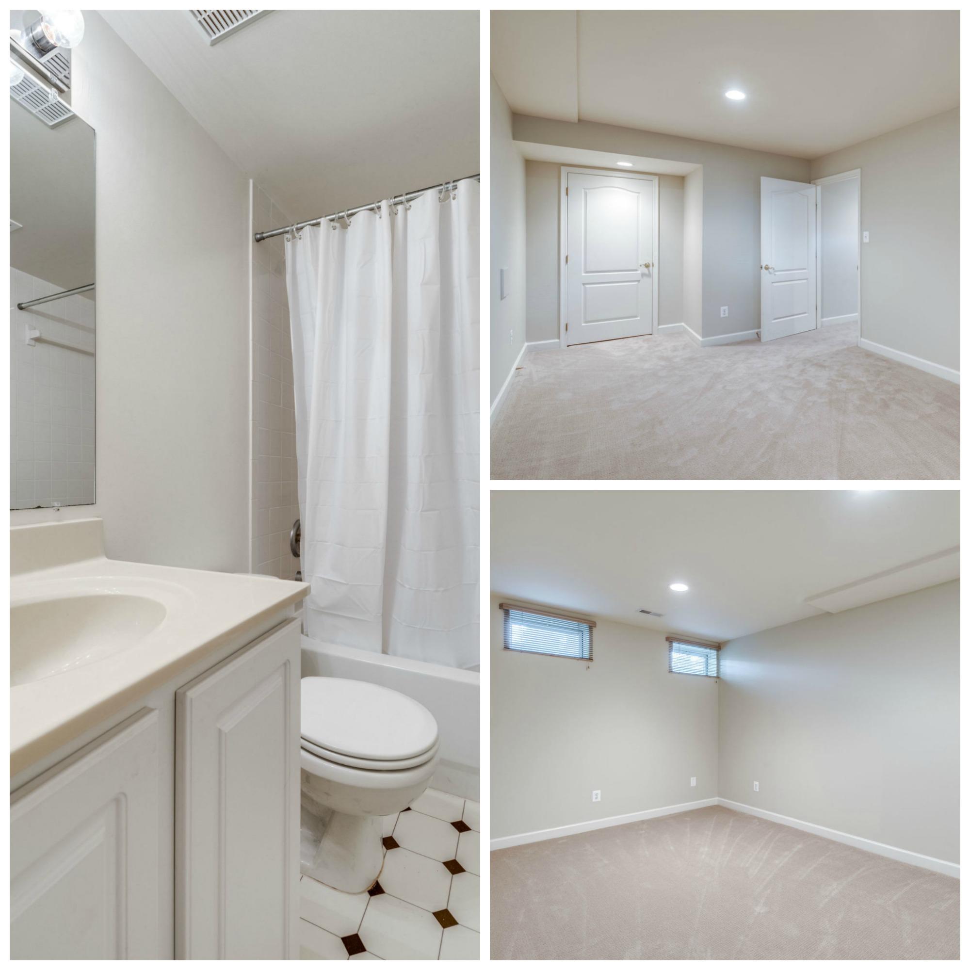 47762 Brawner Pl_Lowes Island_Sterling_Lower Level Bathroom and Den