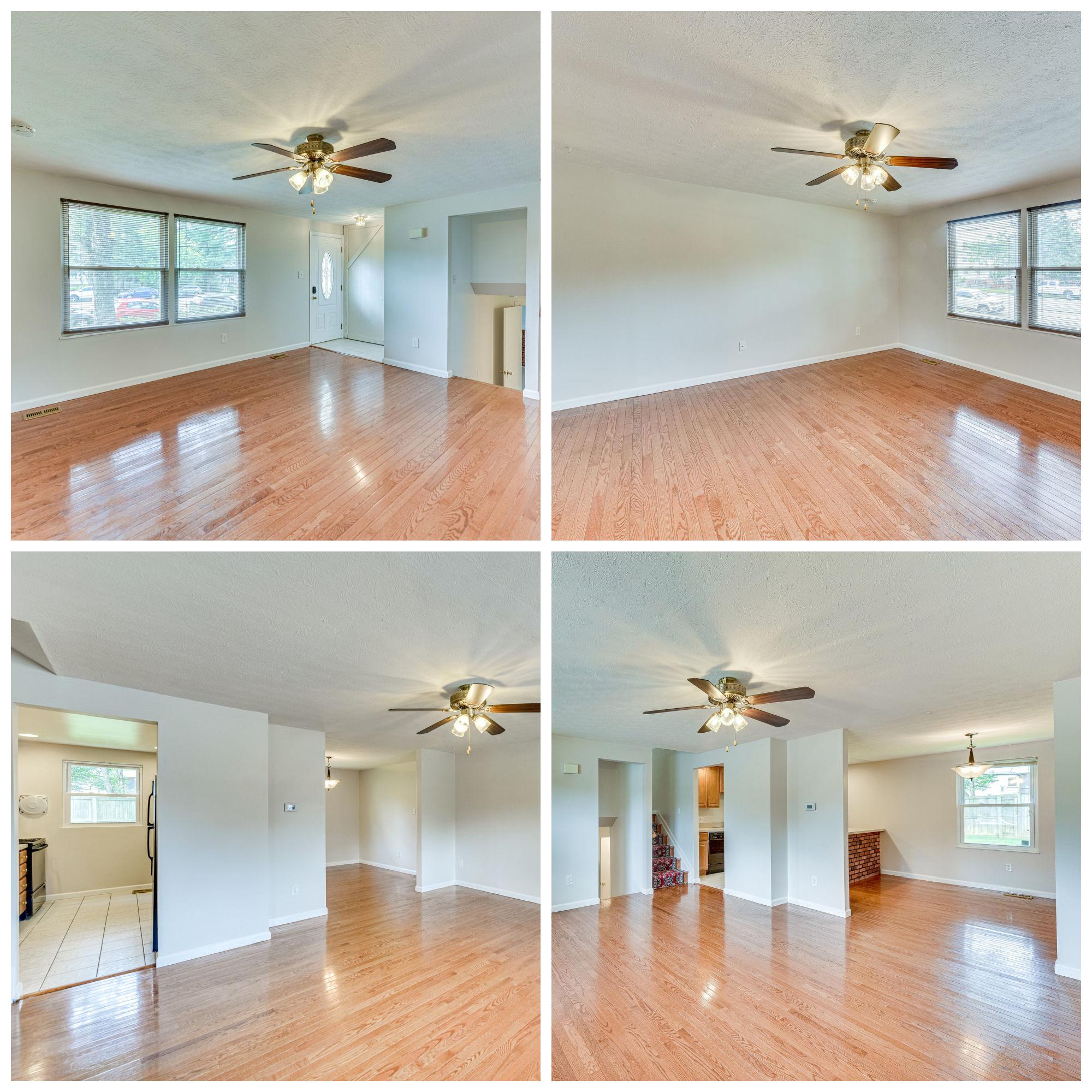 9208 Burke Rd, Burke- Living Room