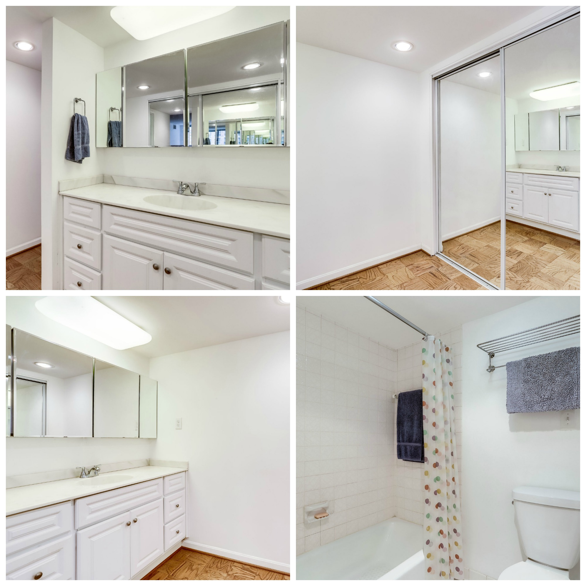 3800 Fairfax Dr #302 Arlington- Master Bathroom