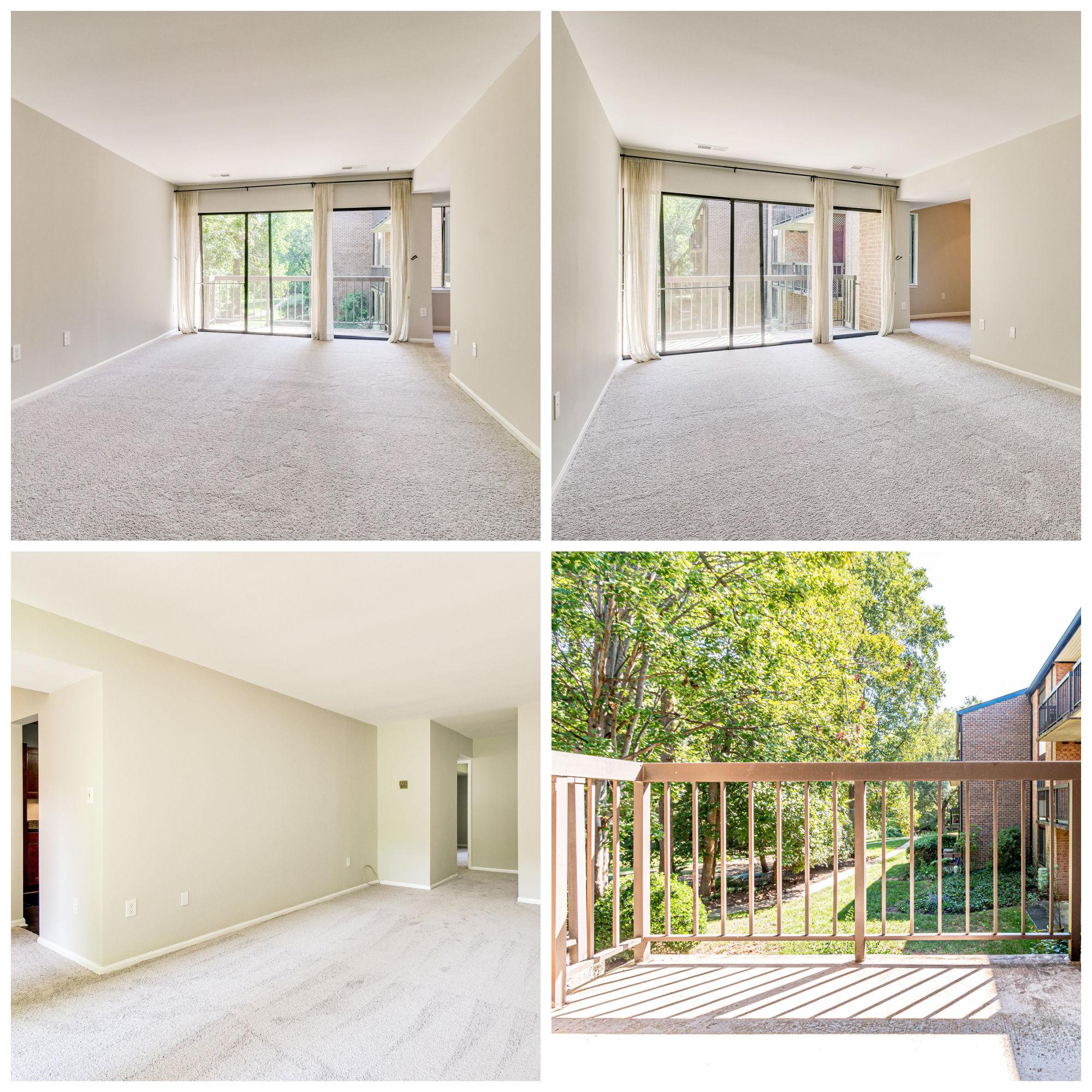 9810 Kingsbridge Dr #102, Fairfax- Living Room and Balcony