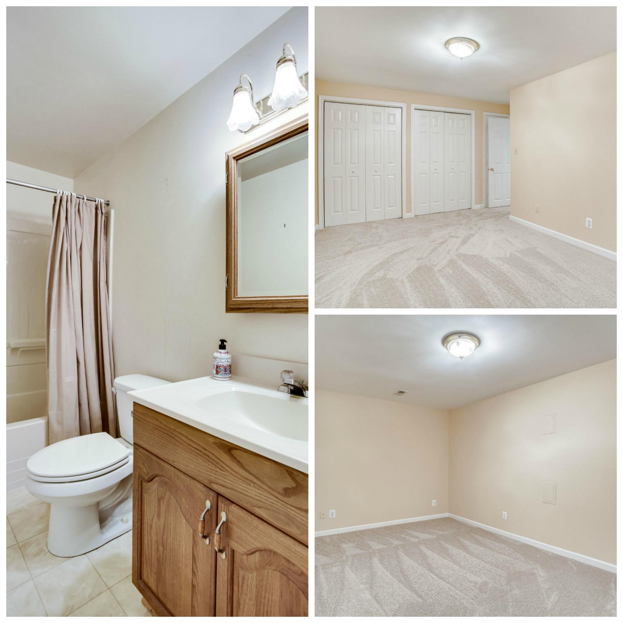 43459 Ridgeview Pl Ashburn Farm - Lower Level Bathroom and Den