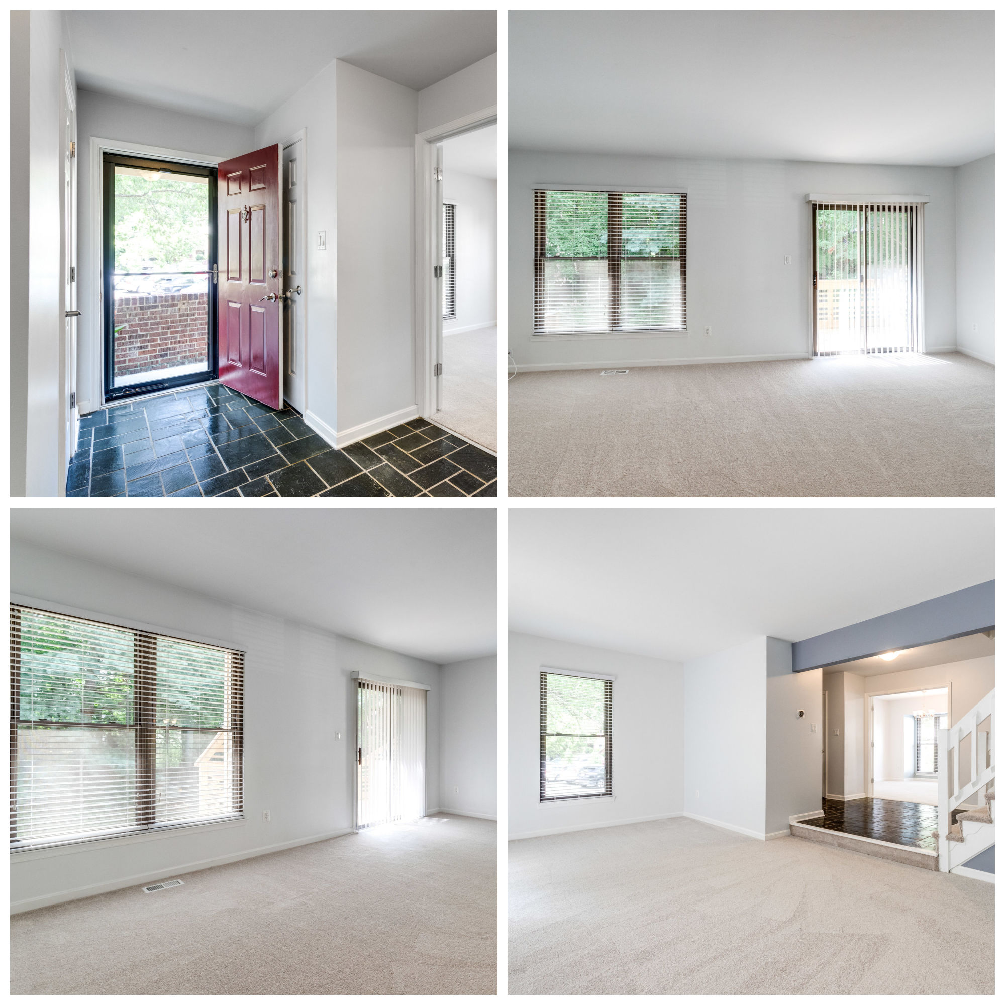 6623 Westbury Oaks Ct, Springfield- Living Room