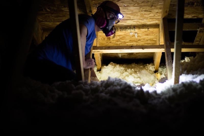 Asbestos in Attic and Walls
