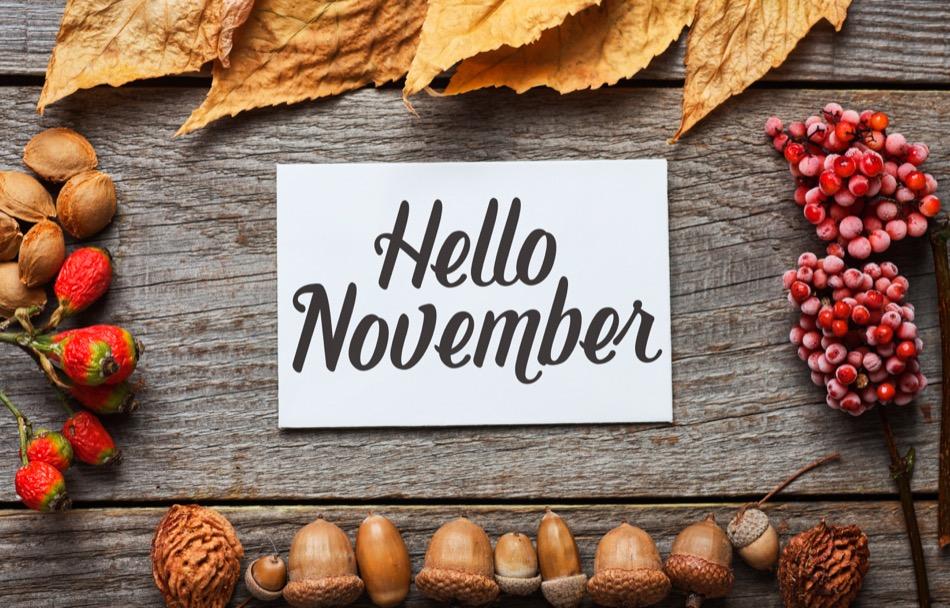 Alexandria VA November Events to Add to Your Calendar