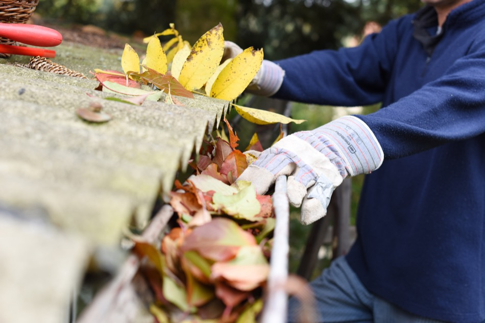 Twice-a-Year Gutter Checks Are Recommended to Prevent Home Problems