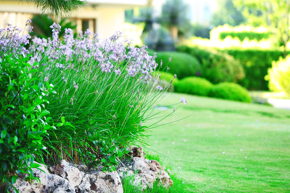 Easy Landscaping Tips To Keep A Home Looking Gorgeous