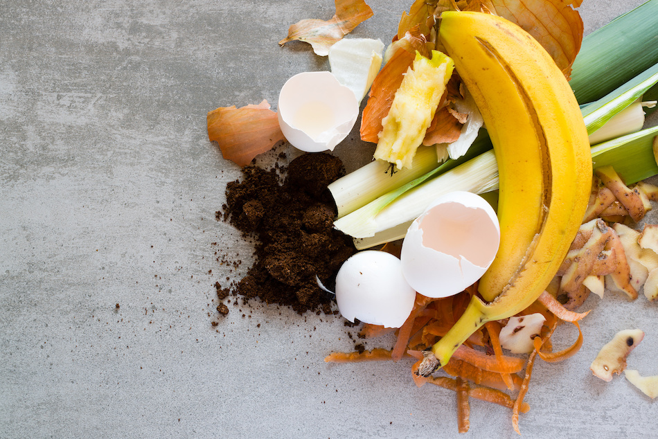 Composting Correctly