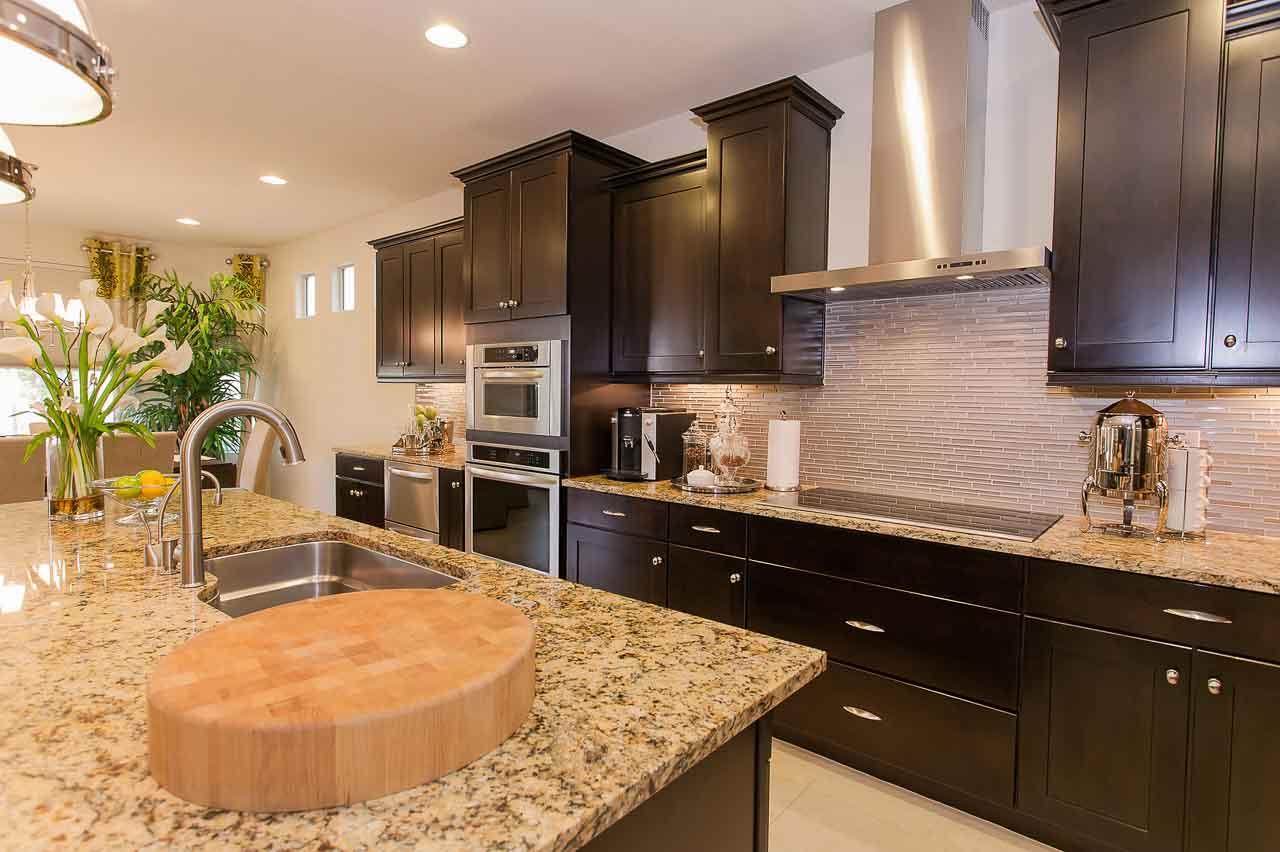 Luxury Condo Kitchen