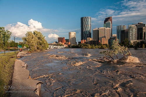 Calgary Flood & Real Estate