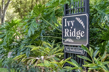 ivy ridge sign
