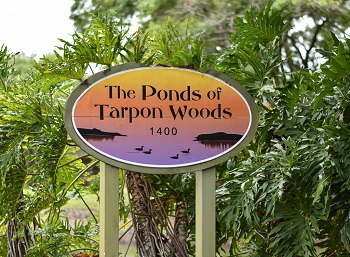 ponds of tarpon woods