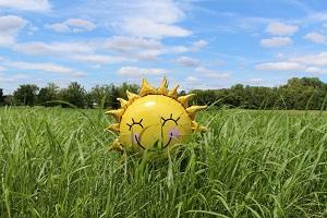 sunshine estates