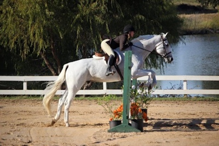 prospering farm equitation