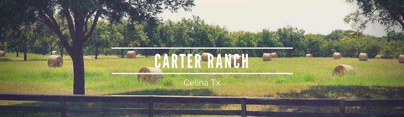 Carter Ranch in Celina Tx