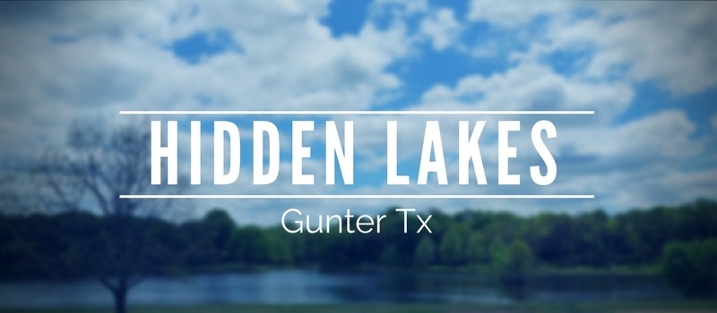 Homes for sale in Hidden Lakes