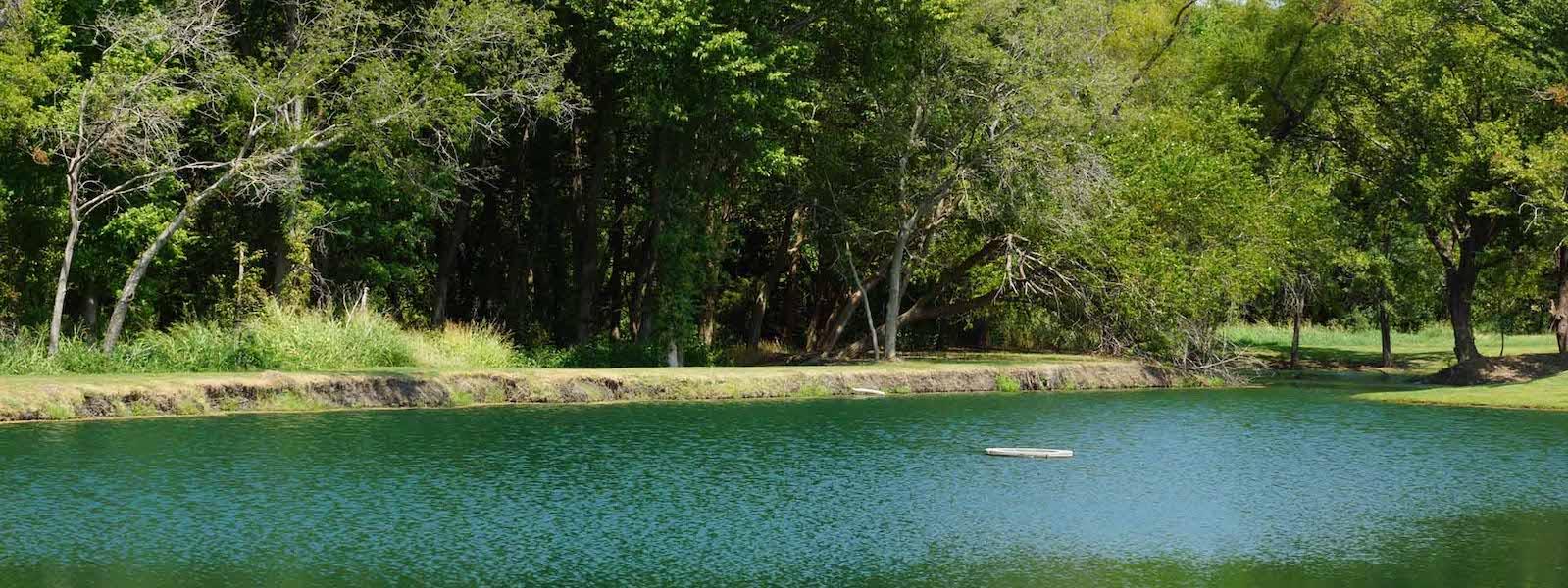 christie farms in prosper has amazing ponds