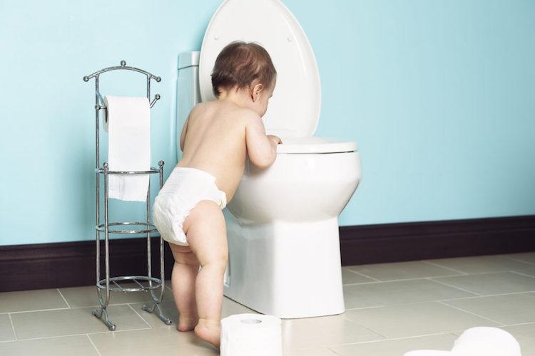 Toilet Maintainance