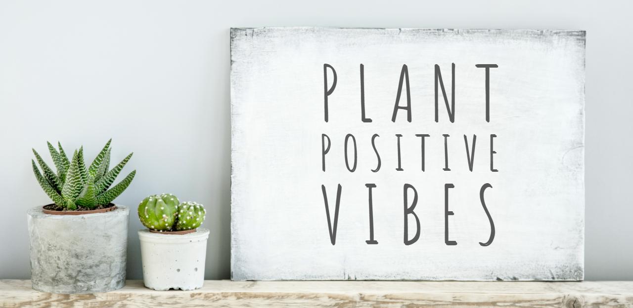 Plant positive vibes