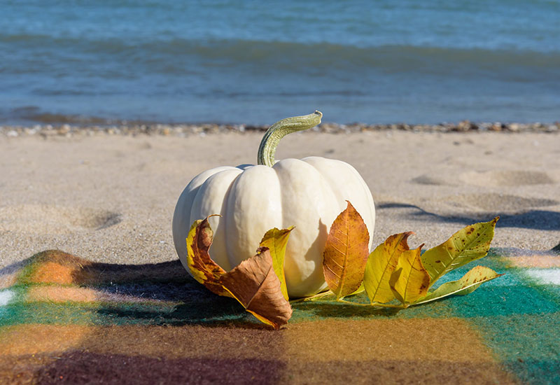 fall leaves and blanket with autmn pumpkin on the beach