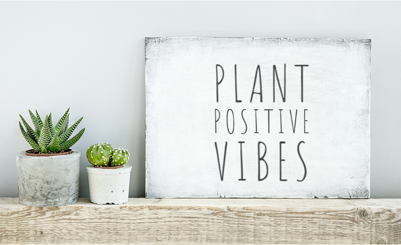 Plant positive vibes