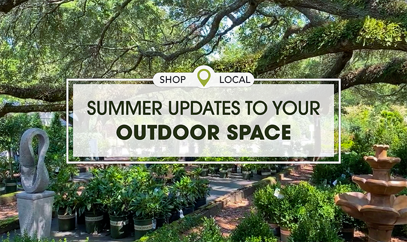 Green trees around nursey Shop Local Summer Updates To Your Outdoor Space