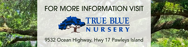 For more information go to True Blue Nurseries.com