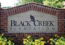 Black Creek Plantation Real Estate