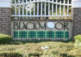 Blackmoor Real Estate