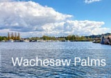 Wachesaw Palms Real Estate