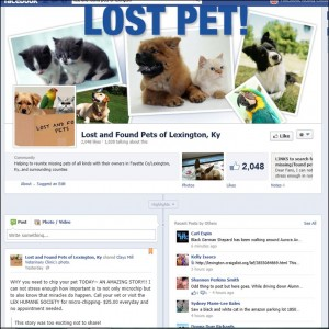 Lost and Found Pets of Lexington, KY