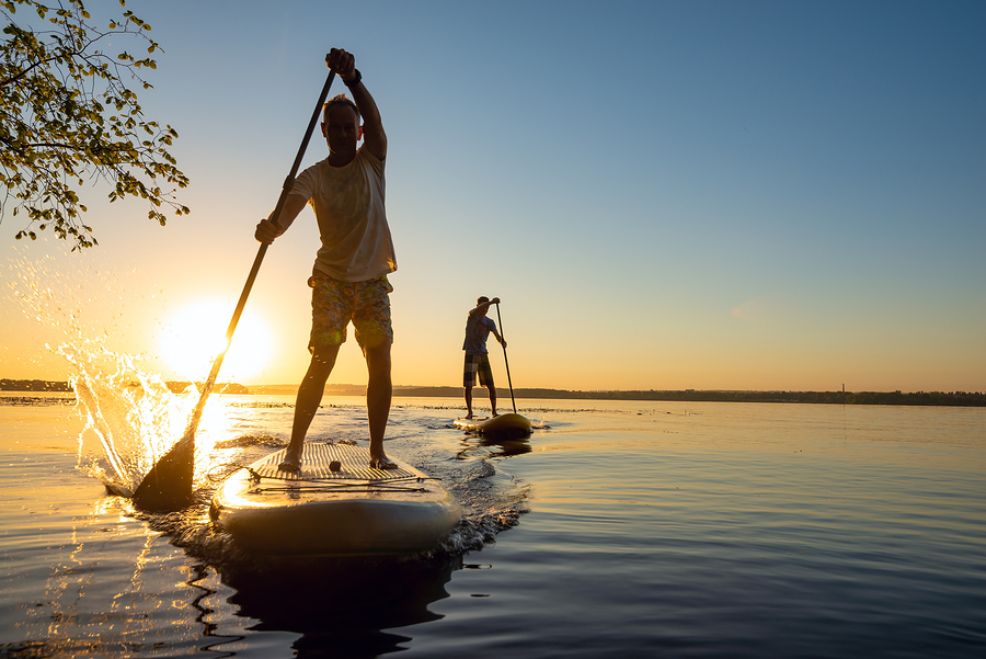 Paddle Board at Endless Summer